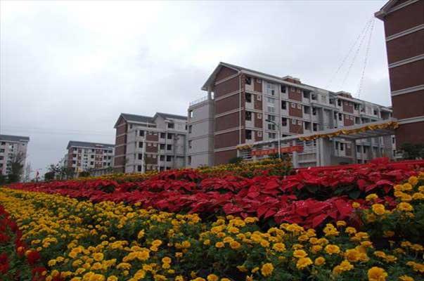 Chongqing Medical University (CQMU) | Study in China